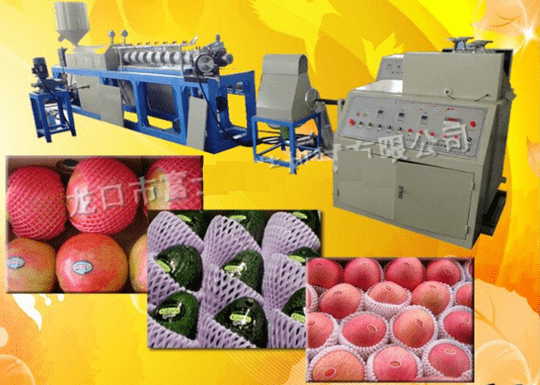 Extrusora de Redinha para Frutas PE Expandido (EPE)